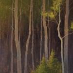 David Grossmann, Illuminate, oil, 20 x 34.