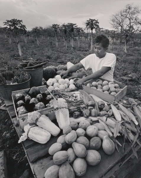 Ansel Adams, Nobuo Yoshida, Farmer near Kaunakakai, Moloka'I, 1958, reproduction print/gelatin silver print, 9 x 7, Center for Creative Photography, University of Arizona.