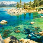 Michelle 