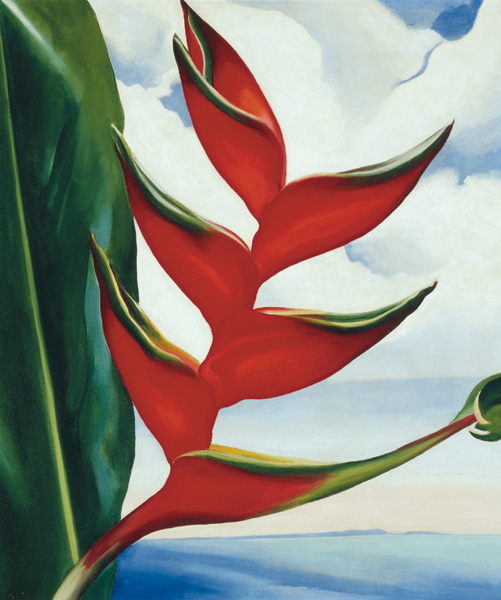 Georgia O'Keeffe, Heliconia—Crab Claw, 1939, oil on canvas, 19 x 16. Collection of Sharon and Thurston Twigg-Smith.