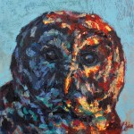 Barred Owl by Patricia Griffin