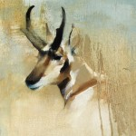 Kathryn Mapes Turner, Sage Pronghorn, oil, 12 x 12.