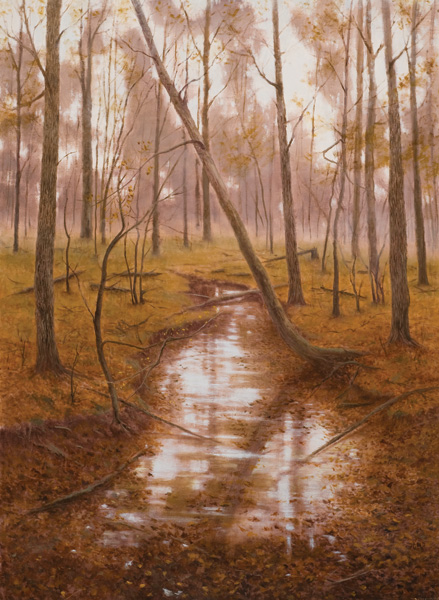 Deborah Paris, Autumn, Pecan Bayou, oil, 40 x 30.