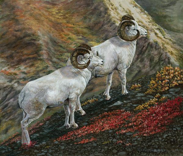 Carolyn Mock, Marmot Mountain Monarchs, oil, 12 x 14.