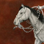 Nicole Viste, The Hackamore, Graphite drawing with painted Acrylic Background, 11 x 14.