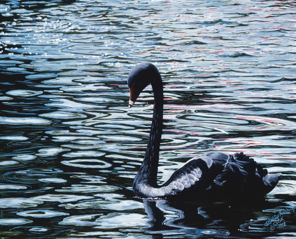 Cindy Sorely-Keichinger, Black Serenity, acrylic, 18 x 24.