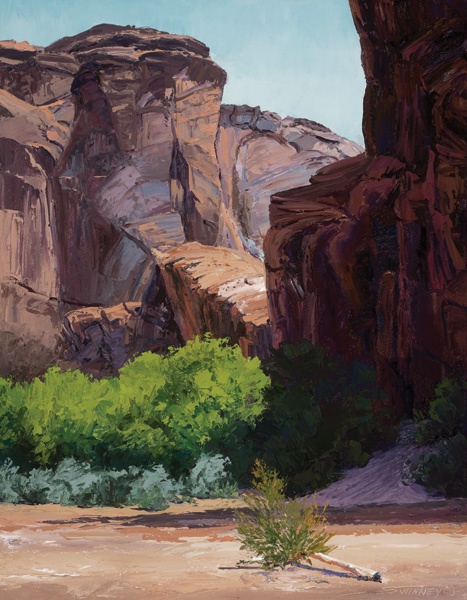 Carol Swinney, Colors of the Canyon, oil, 24 x 18.