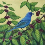 Margie Crisp, Indigo Bunting and Beauty Berry, egg tempera/ gold leaf, 11 x 14.