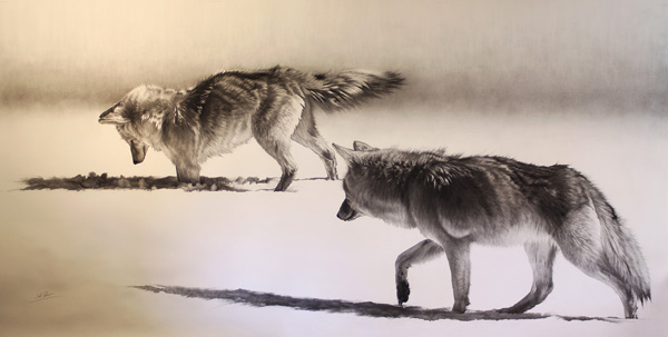 Cole Johnson, Coyotes Hunting, charcoal, 48 x 96.
