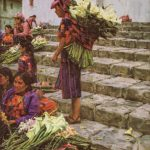 Ned Mueller, Guatemala Flower Market, oil, 12 x 16.