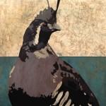 Maura Allen, Oreortyx Pictus, acrylic, 48 x 48.