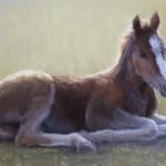 Kathleen Dunphy, Colt, oil, 15 x 24.