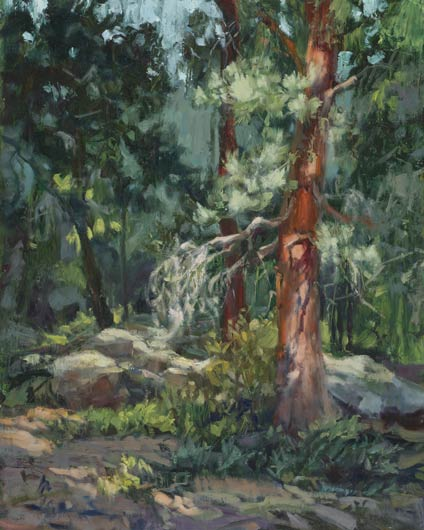 In Kimberly's Forest, oil, 20 x 16.