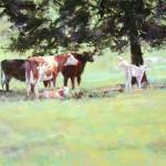 Summer Pasture, pastel, 16 x 20.