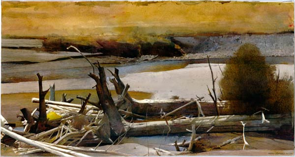 Driftwood, watercolor, 16 x 30.
