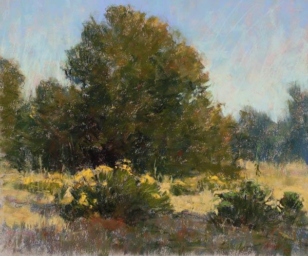 Morning Among the Cottonwoods, pastel, 10 x 12.
