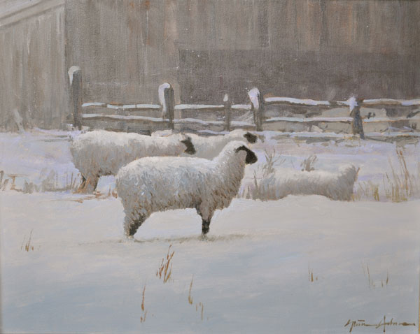 Winter Sheep II, oil, 24 x 30.
