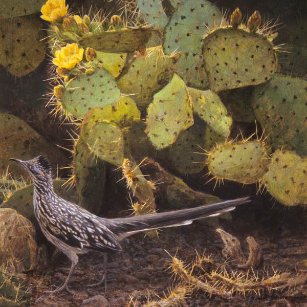 Roadrunner & Prickly Pear Cactus, acrylic, 16 x 16.