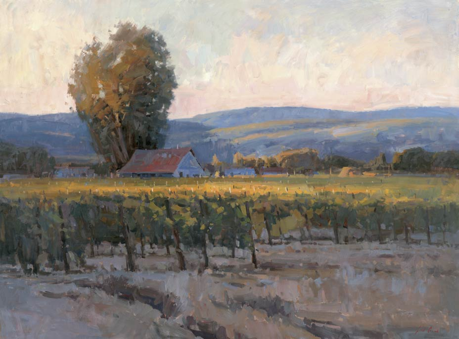 Evening Vineyard, oil, 36 x 48.
