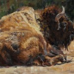 Bison, oil, 24 x 18, by Valerie Amon