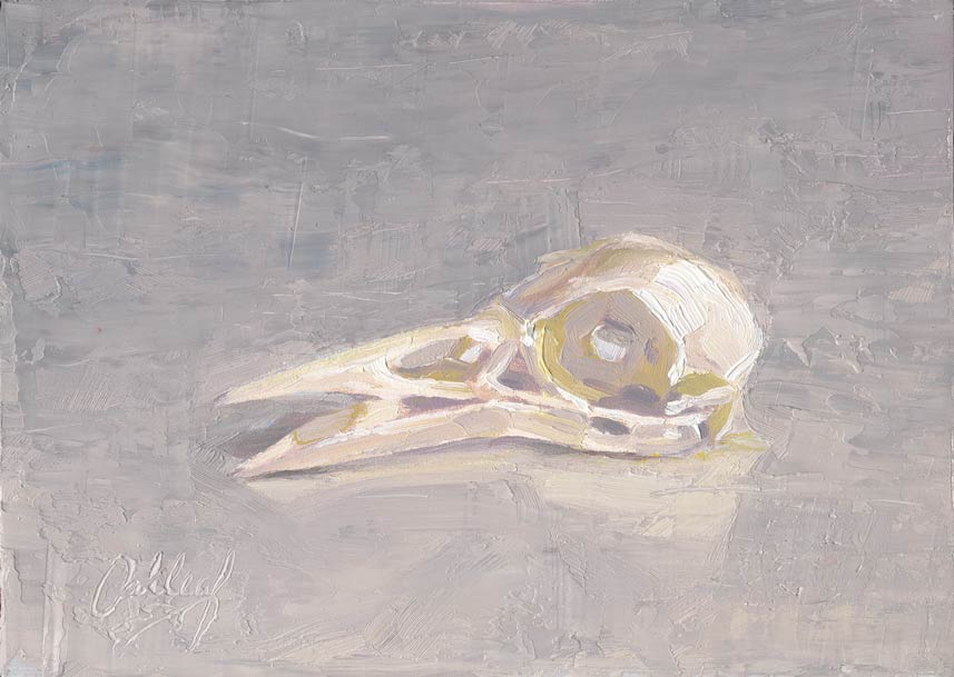Crow Skull, oil, 6 x 8, by Dan Oakleaf