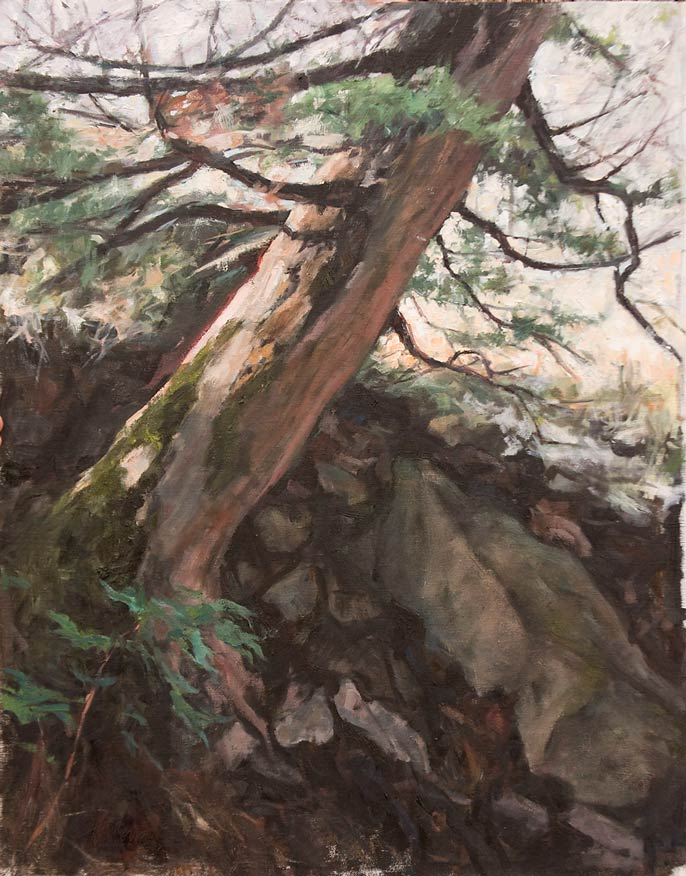 Hillside Pine, oil, 26 x 32, by Valerie Amon