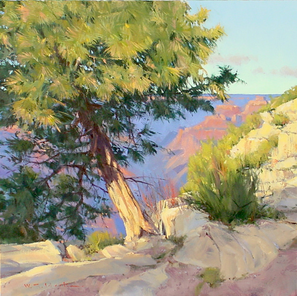 William Hook, Leaning Pine, acrylic, 24 x 24.