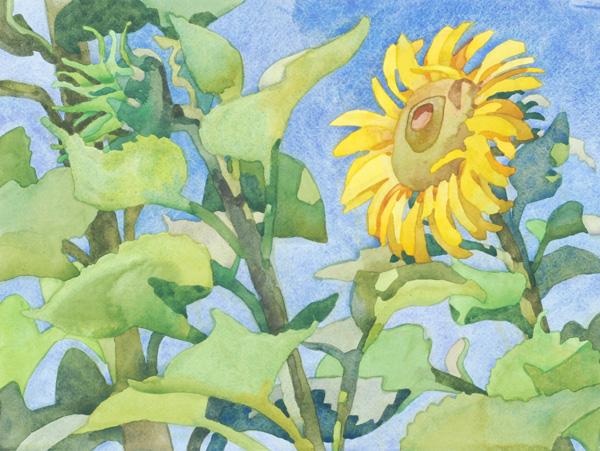 Carolyn Lord, Sunflower, watercolor, 11 x 15.