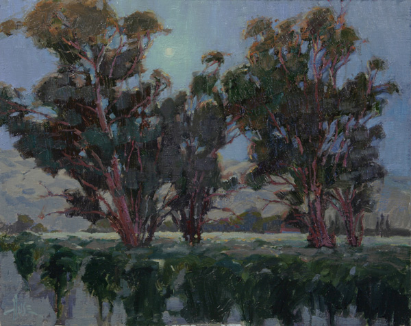 Debra Huse, Moonlight & Cabernet, oil, 16 x 20.