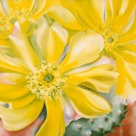 Georgia O'Keeffe, Yellow Cactus, oil, 30 x 36.