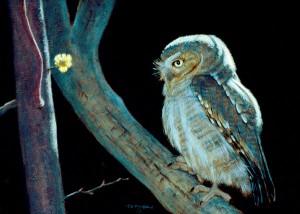 Timothy David Mayhew, Night Wise, oil, 12 x 16.