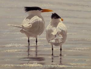 Timothy David Mayhew, One Good Tern, oil, 9 x 12.