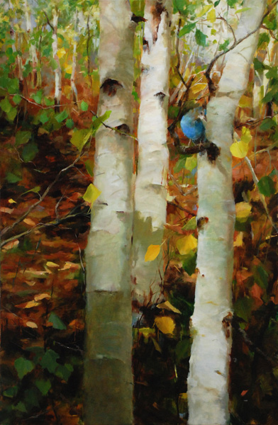 Kathy Anderson | Aspens and Steller's Jay, oil, 30 x 20.