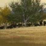 Jeri Salter, Afternoon Siesta, pastel, 9 x 16.