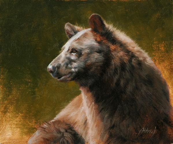 Edward Aldrich, Black Bear Portrait, oil, 10 x 12.