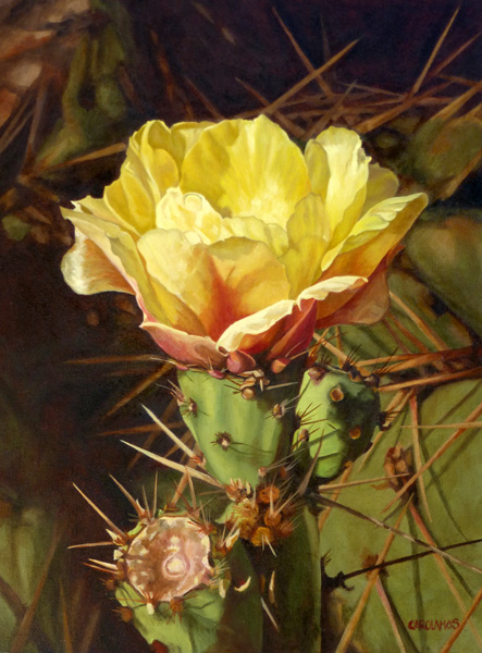 Carol Amos, Yellow Prickly Pear Blossom, oil, 16 x 12.