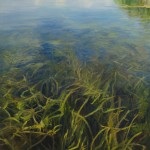 Sheri Farabaugh, Beneath the Surface, oil, 24 x 36.