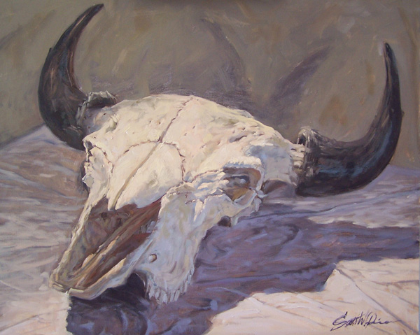 Scott Prior, Bill's Buffalo Skull, oil, 24 x 30.