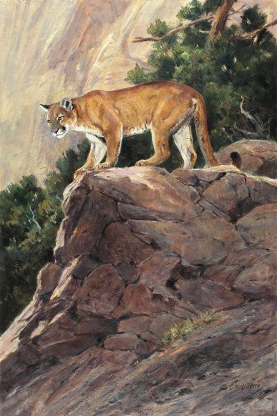 Ken Carlson, Canyon Watch, oil, 30 x 20.