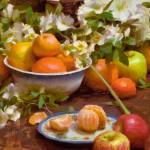 Daniel J. Keys, Bowl of Citrus, oil, 16 x 20.