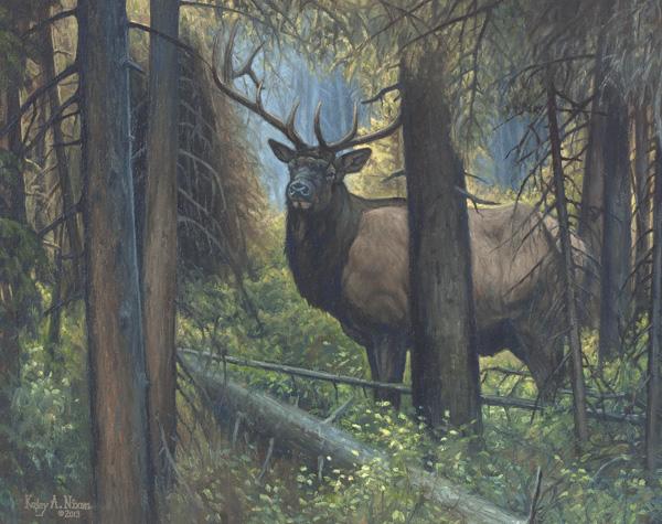 Kasey Nixon, Deep in the Timber, oil, 22 x 28.