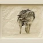 Pete Zaluzec | Down Under, gampi paper/archival ink, 17 x 14.