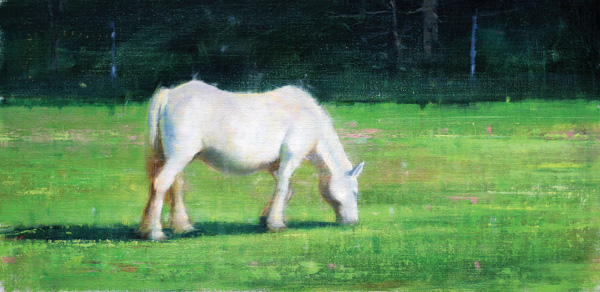 Elizabeth Pollie, Grass Root, oil, 12 x 24.