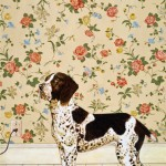 Ellie Fuller, Dog With Wallpaper, acrylic, 48 x 30.
