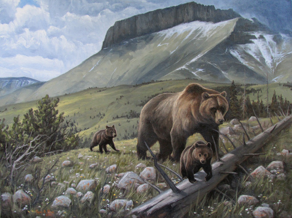 Kasey Nixon, Grizzlies on the Rocky Mountain Frontier, oil, 18 x 24.