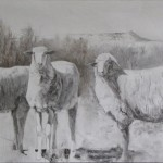 Lane Hall, Dusty Sheep, graphite and gesso, 10 x 20.