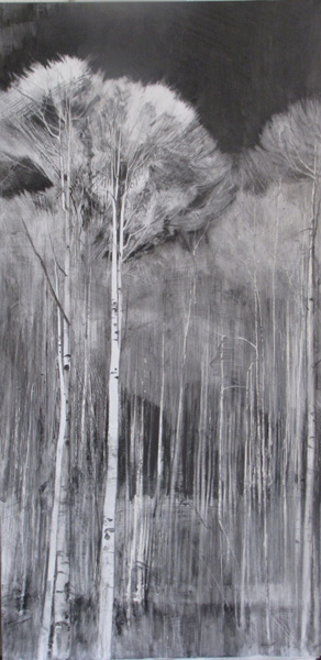 Lane Hall, Southern Colorado, graphite and gesso, 24 x 12.