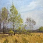 Marc Hanson, Spring Poplar, oil, 18 x 24.