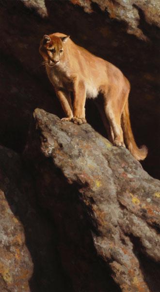 Kyle Sims | High Rise, oil, 50 x 28.