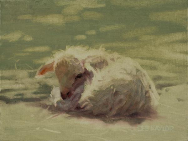 Deb Kaylor, Naptime, oil, 9 x 12.